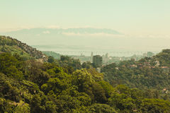 Forest and city view over Rio Stock Image