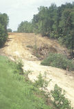 A forest clearing for road development in Georgia Stock Images