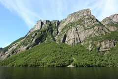 Forest and Cliffs at Western Brook Pond Royalty Free Stock Image