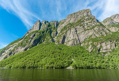 Forest and Cliffs at Western Brook Pond Stock Image