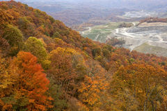 Forest and coal mine Appalachia Royalty Free Stock Photos