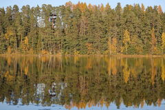 Forest Of Colorful Autumn Trees Reflecting In Calm Lake, Nature Landscape Royalty Free Stock Images