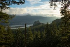Forest in the Columbia River Gorge at sunset. Travel in Washington and Oregon. Forest landscape in the Columbia River Gorge at sunset. Travel in Washington and Royalty Free Stock Image
