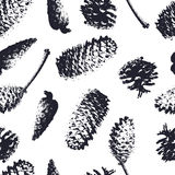 Forest cones seamless pattern. Spruce and pine cones. Stock Image