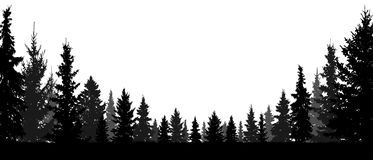 Free Forest, Coniferous Trees, Silhouette Vector Background. Royalty Free Stock Images - 124487789
