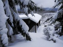 Forest cottage in a winter. Idyllic forest cottage in a winter royalty free stock photos