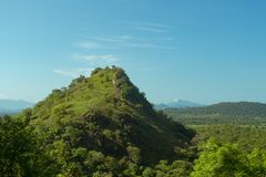 The forest-covered mountain. View of Sri Lanka. The forest-covered mountain. View of Sri Lanka royalty free stock image