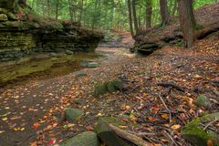 Forest Creek In Autumn. A beautiful scene along the Sulpher Springs Creek in Bentleyville Ohio during peak fall colors. Located in the South Chagrin Reservation stock photos
