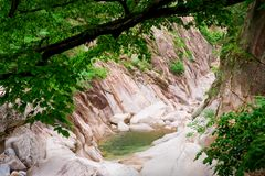 Forest creek canyon at Seoraksan National Park Royalty Free Stock Image