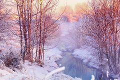 Free Forest Creek In Winter Forest Stock Images - 139864364
