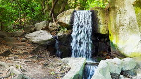 A forest creek lined with stones stock footage