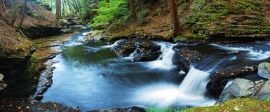Forest Creek panorama. View with rocks and Autumn trees Stock Image