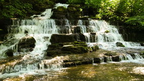 Forest creek and waterfall Royalty Free Stock Photos