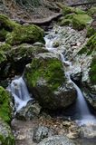 Forest creek waterfalls. A small forest creek flowing through the woods Stock Photo