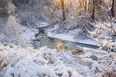 Forest creek after winter storm Royalty Free Stock Image