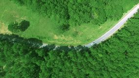 The forest in Da Lat, Lam Dong in top view by drone | 4K aerial of flying over a beautiful green forest in a rural landscape stock footage