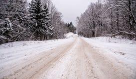 Forest dangerous road in winter season Stock Image