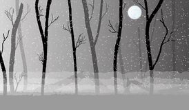Forest in the dark mist, trees silhouettes Royalty Free Stock Images