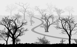 Forest in the dark and road, trees silhouettes Royalty Free Stock Photo