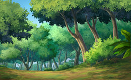 Forest daytime Stock Image