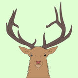 Forest deer head. Royalty Free Stock Photography