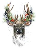 Forest deer watercolor illustration. Christmas reindeer. Winter greeting card design.