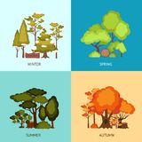 Forest Design Concept Stock Images