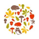 Forest Design Elements Imagen de archivo libre de regalías