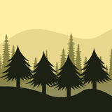Forest design, vector illustration. Royalty Free Stock Photo