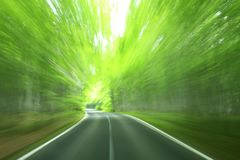Forest drive. Speed and power Stock Images