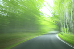 Forest drive. Speed and power Royalty Free Stock Photography