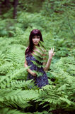 Forest dryad. stock photos