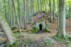 Forest Dungeon royalty free stock photo