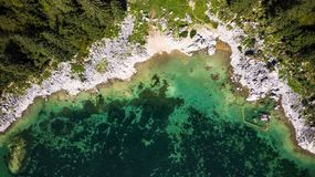 Free Forest Edge At Lake With Rocky Shore. Aerial Drone Top Down View. Abstract Natural Pattern Royalty Free Stock Images - 160363019
