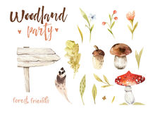 Forest elements witn mushrooms, branches, grassl for kindergarten, isolated illustration for children , pattern. Watercolor Hand drawn boho kids image Perfect Stock Photo