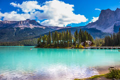 The forest and Emerald Lake Royalty Free Stock Image