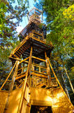 Forest Emergent tower Stock Photo