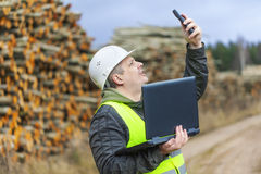 Forest employee near stacks of logs Royalty Free Stock Image