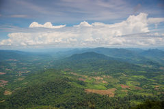 Forest encroachment to plant corn Tak ,Thailand. Stock Images