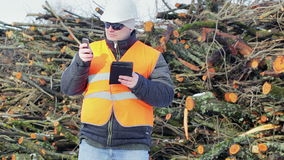 Forest engineer with tablet PC and cell phone near piles of logs stock video footage