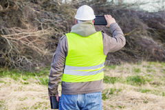Forest engineer with tablet PC near pile of twigs Stock Image