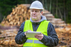 Forest engineer with tablet PC near piles of logs. Autumn Day Royalty Free Stock Image