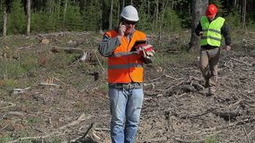 Forest engineer talking on cell phone in destroyed forest stock video footage