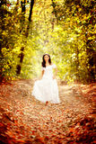 Forest fairy. Beautiful forest fairy on a road covered with dead leafs in autumn Stock Image