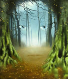 Forest Fairy Imagem de Stock