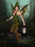 Forest Fairy with lantern royalty free illustration