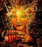 Forest fairy shaman with panflute and crystal, detailed colorful illustration Stock Images