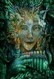 Forest fairy shaman with panflute and crystal, detailed colorful illustration.  stock illustration