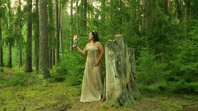 A Witch Conjure In The Forest Stock Footage - Video of carnival