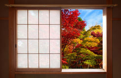 Forest of fall colors seen through an open Japanese sliding window in autumn Stock Photography